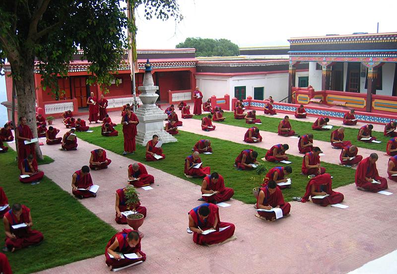The monks of Shenten Menriling Bon monastery sitting for an annual examination, Solan, 2008